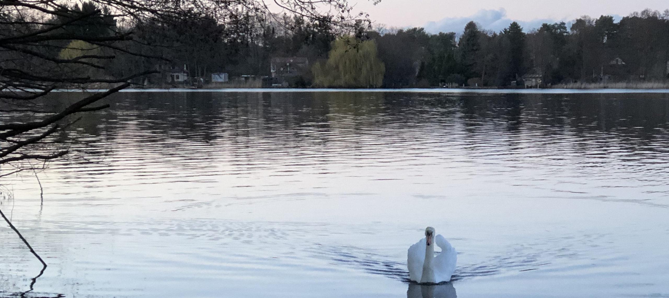 Badestelle Krüpelsee
